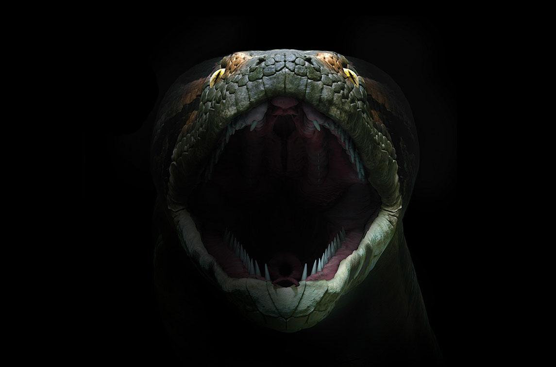 World's Largest Snake