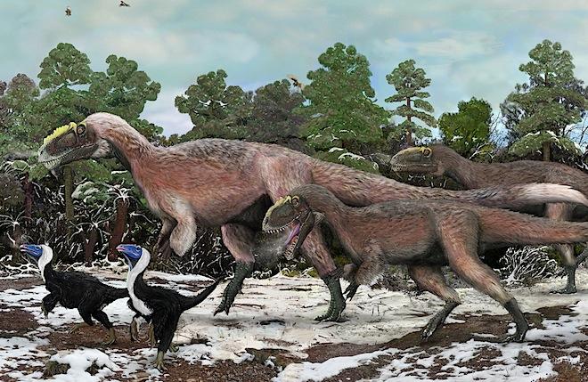 Feathery Dinosaurs Go Large