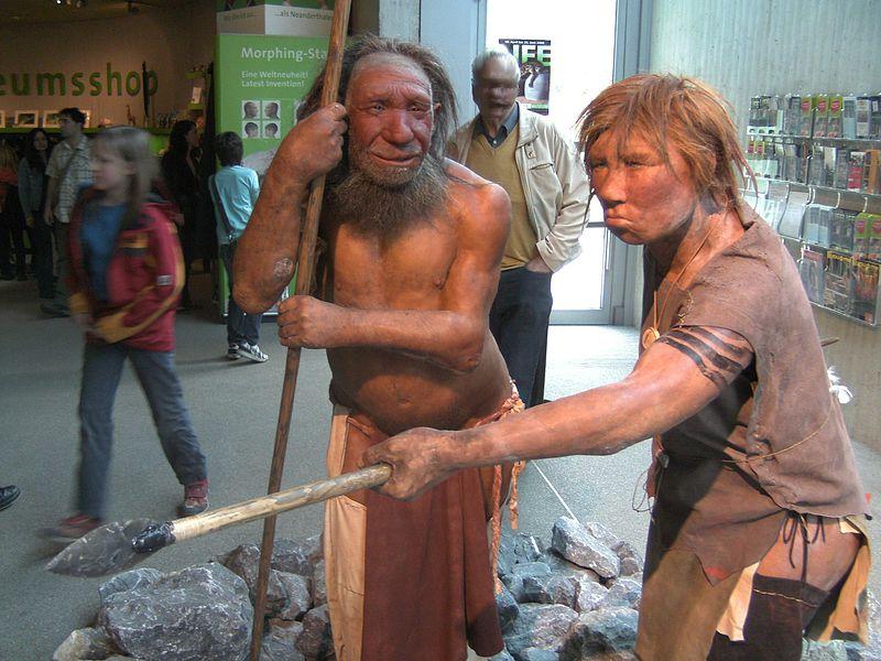 Humans broke off Neanderthal sex after leaving Africa