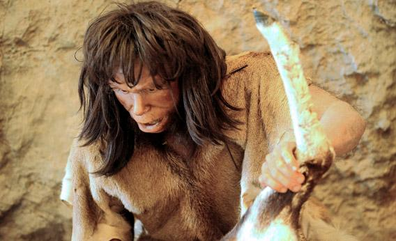 The Neanderthal in My Family Tree