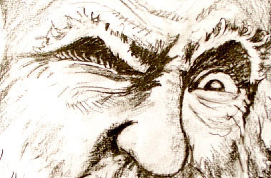 Charles Darwin And The Terrible, Horrible, No Good, Very Bad Day