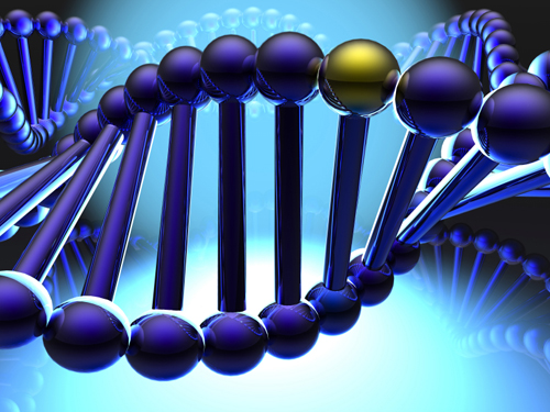 Evolution of New Genes Captured