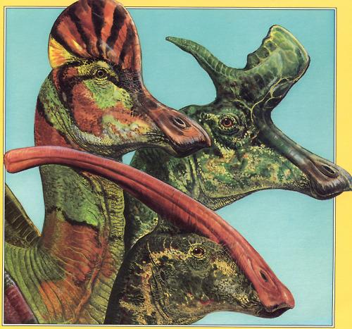Duck-Billed Dino Dentition