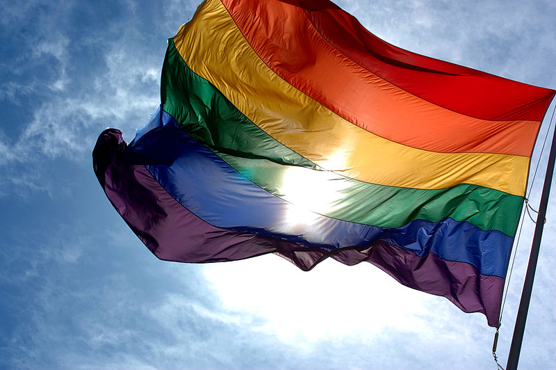 New Ideas About the Evolution of Homosexuality