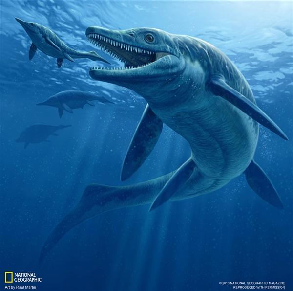 New Ichthyosaur Species Ruled Pangaea's Seas