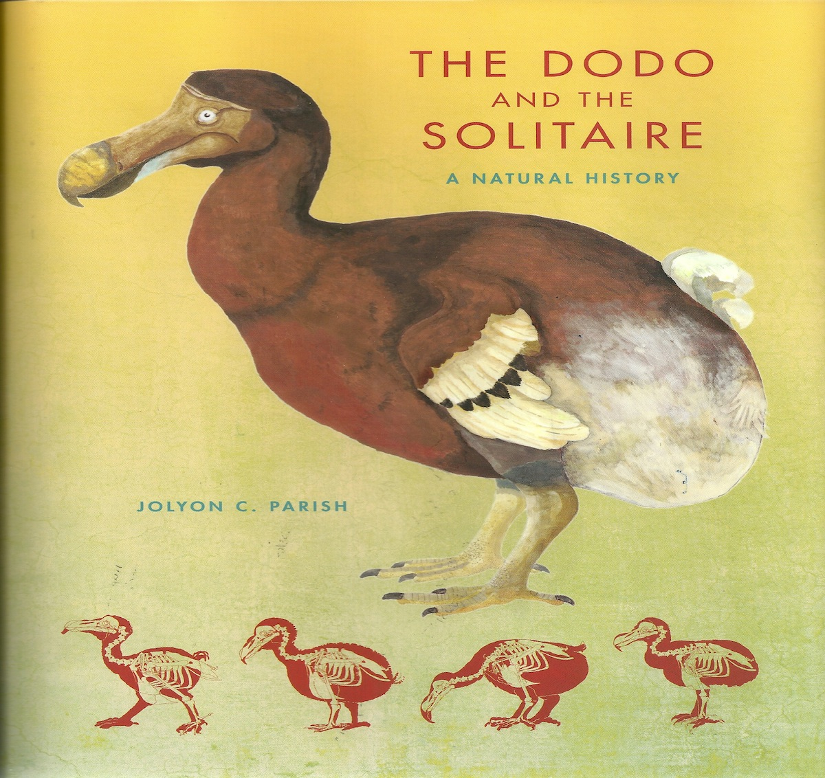Tackling the Mystery Behind The Dodo and the Solitaire