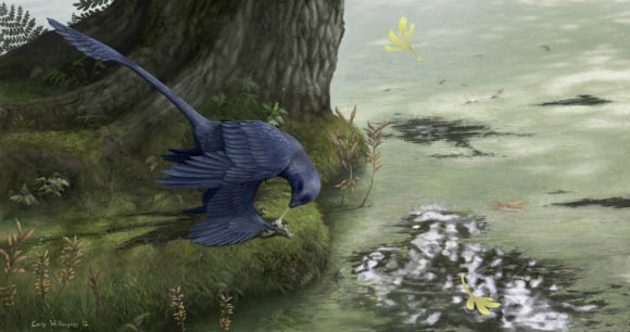 Microraptor Snacked on Fish