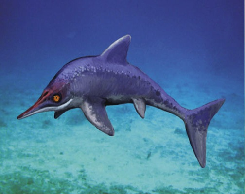 Cretaceous Ichthyosaur Species Lived Much Later Than Others