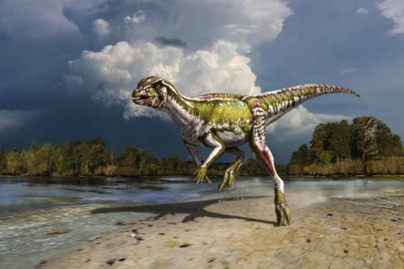 Smallest Herbivorous Dinosaur Discovered in Canada: Albertadromeus
