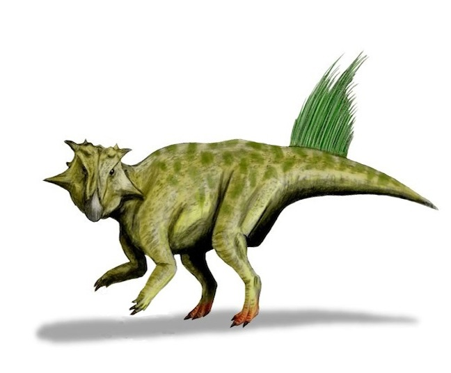 Dinosaurs Crawled on All Fours Before Walking on Legs