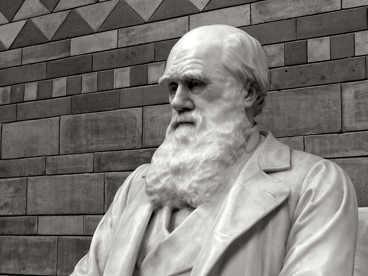 Darwinism's Frontier – The Human Mind