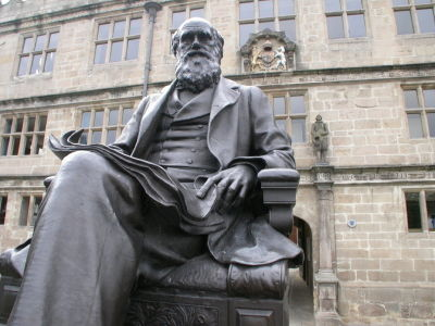 Darwin's Invisible Hand: Market Competition, Evolution And The Firm