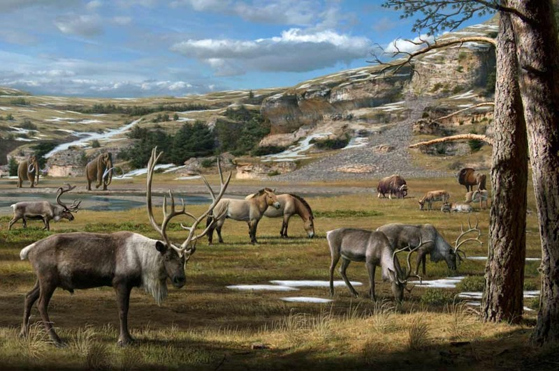 How Did Ancient Ecosystems React to Climate Change?
