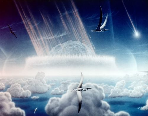 Freshwater Species Were Able to Outlive Marine Species After Dinosaur Mass Extinction