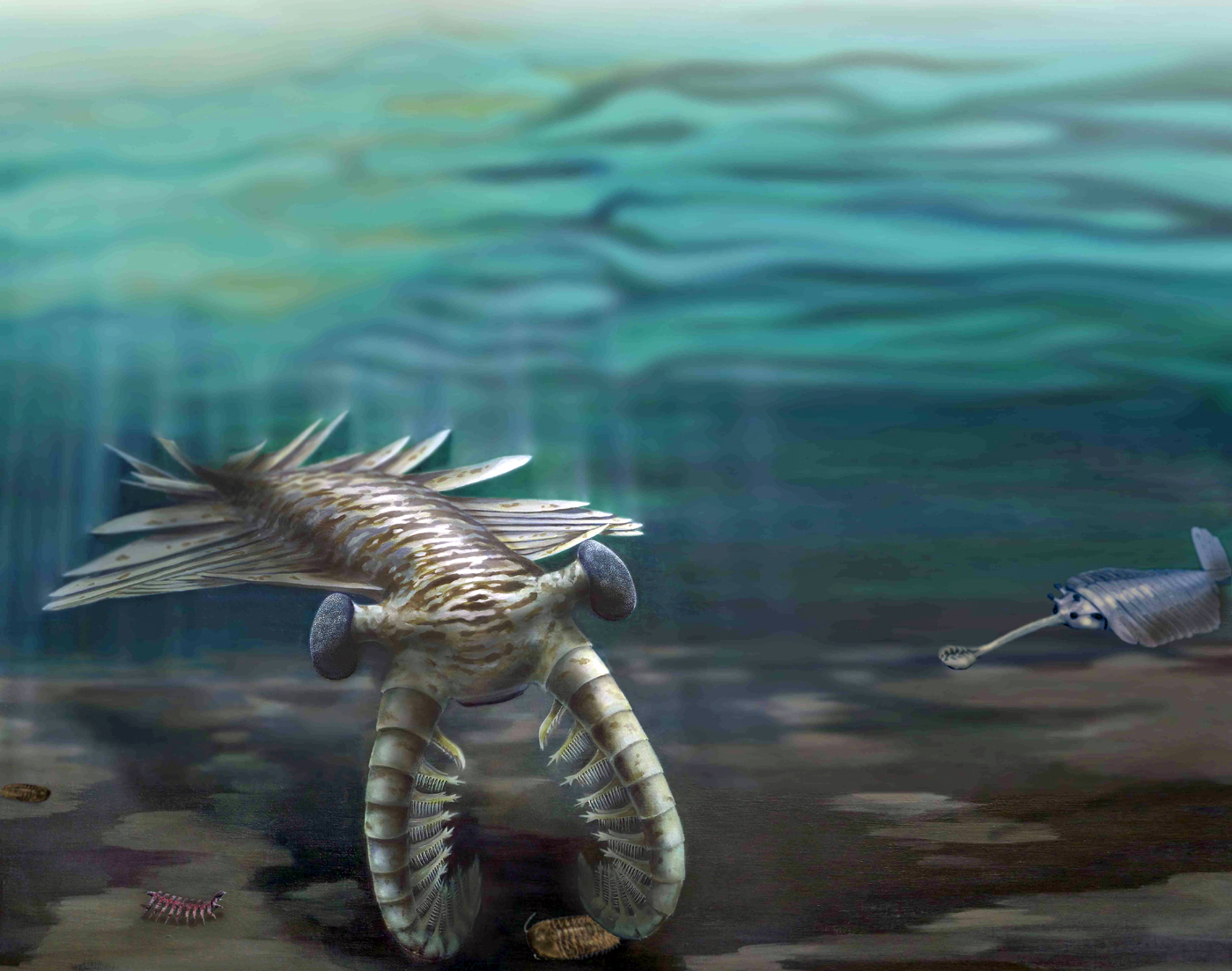 Clocking the Cambrian