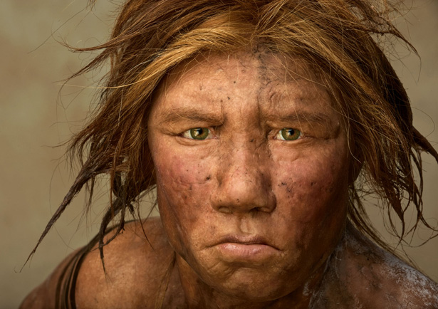 Toe Reveals Complete Genomic Sequence of Neanderthal