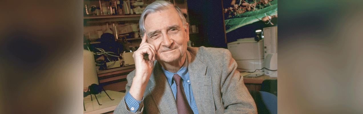 Evolutionary Biology's Eagle Scout: E.O. Wilson