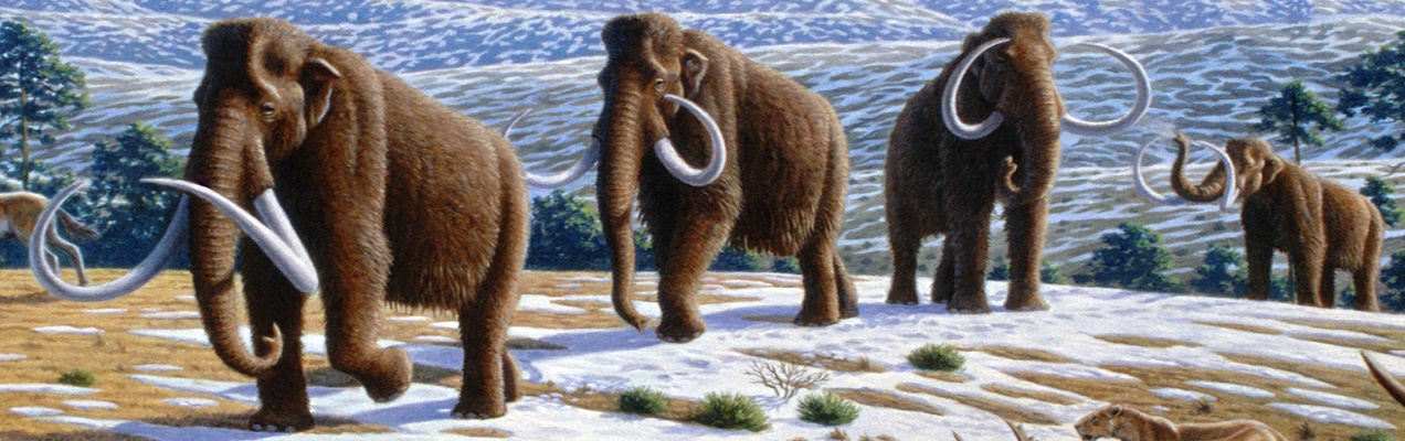Mammoth Movement Mapped Out