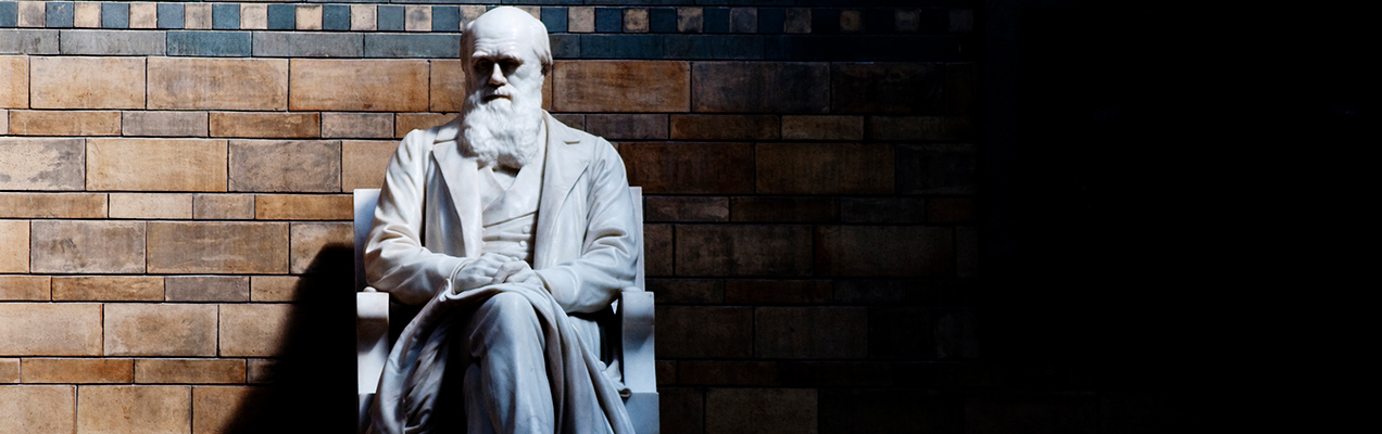 Social Darwinism: Myth and Reality