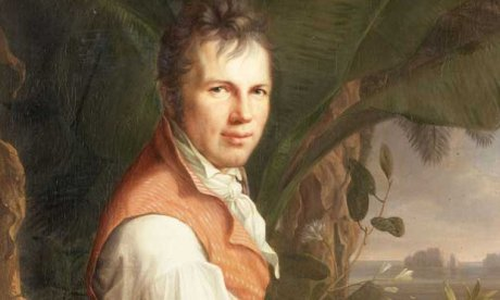 Shopping For a Von Humboldt Bust
