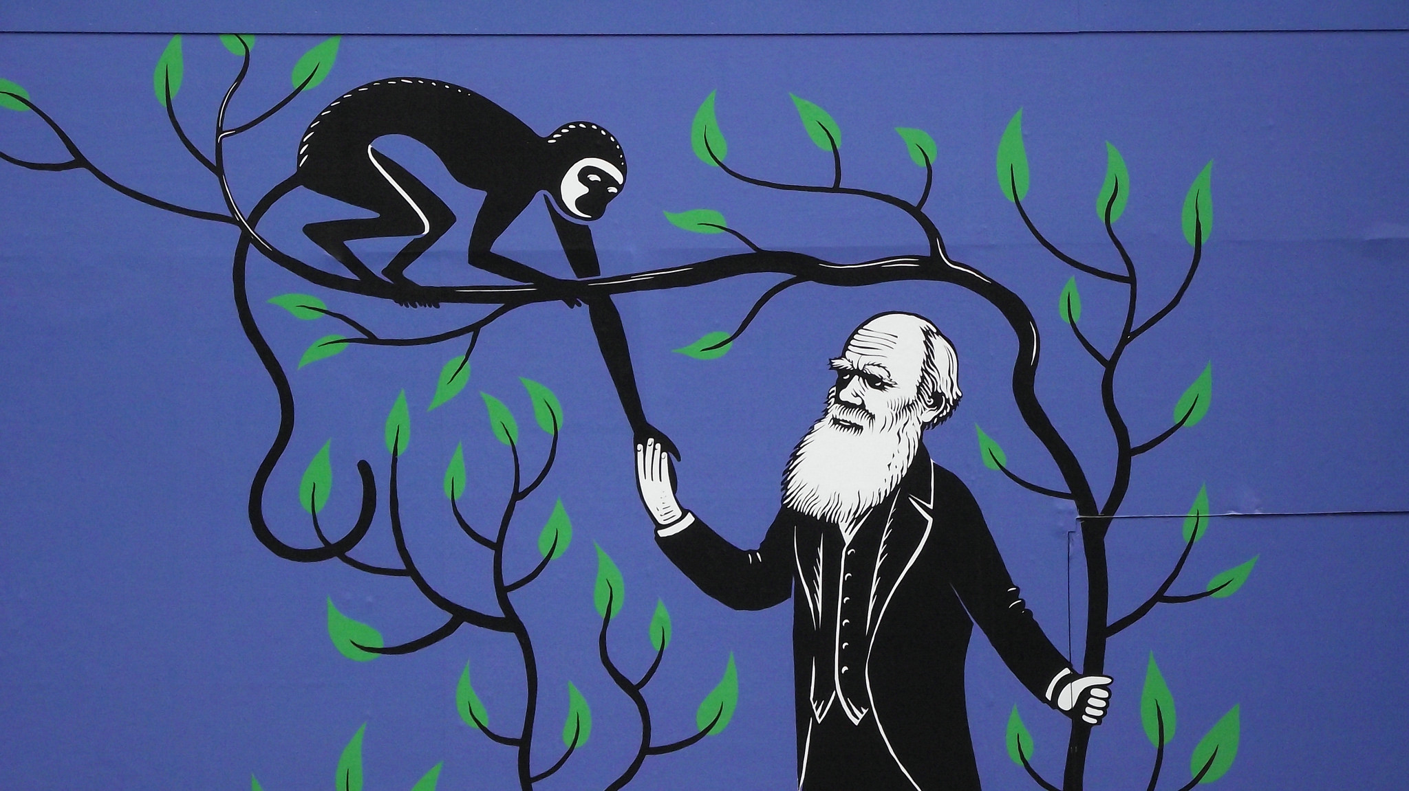Using Evolution to Teach Evolution