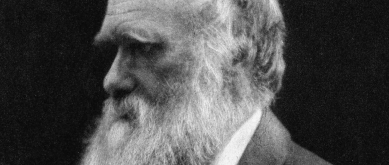 What was Darwin Thinking? A Lesson From The Psychology of Evolution