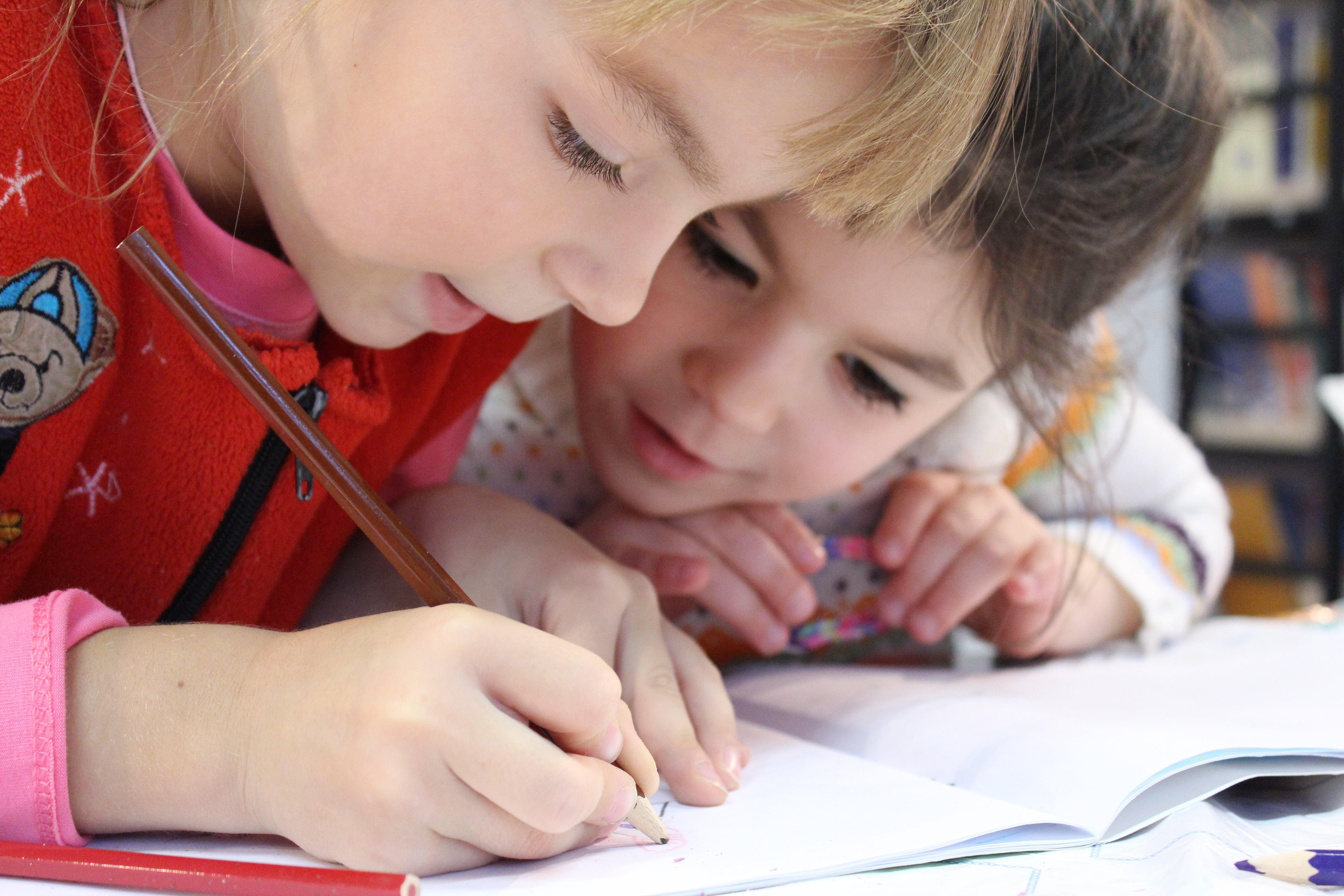 Should Evolution be Taught in Elementary School?