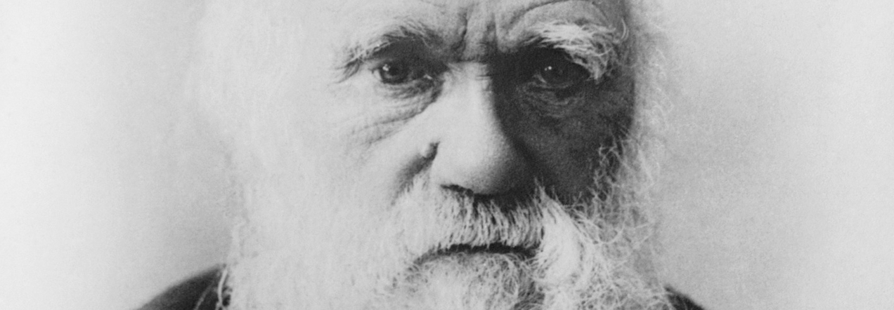 Environmental Sociology and the Second Darwinian Revolution