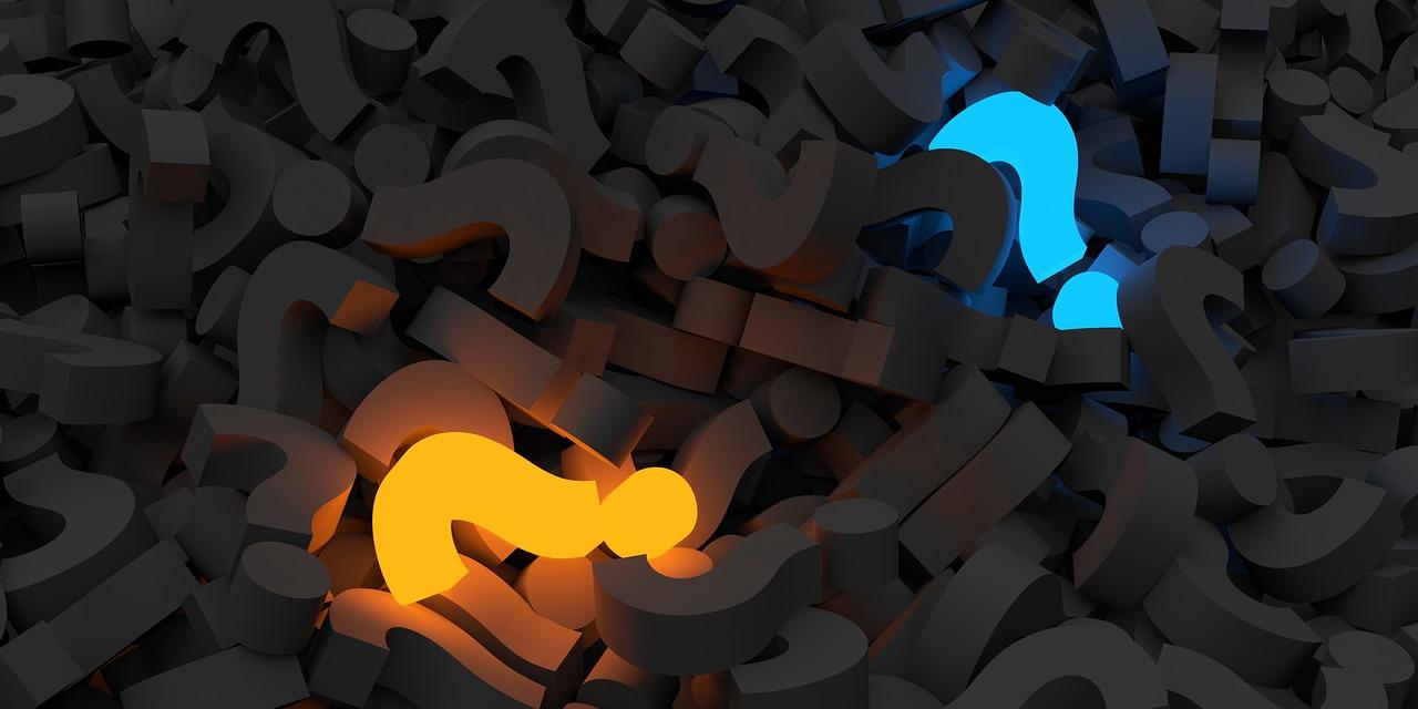 Curiosity as a Commandment for Business School Curricula