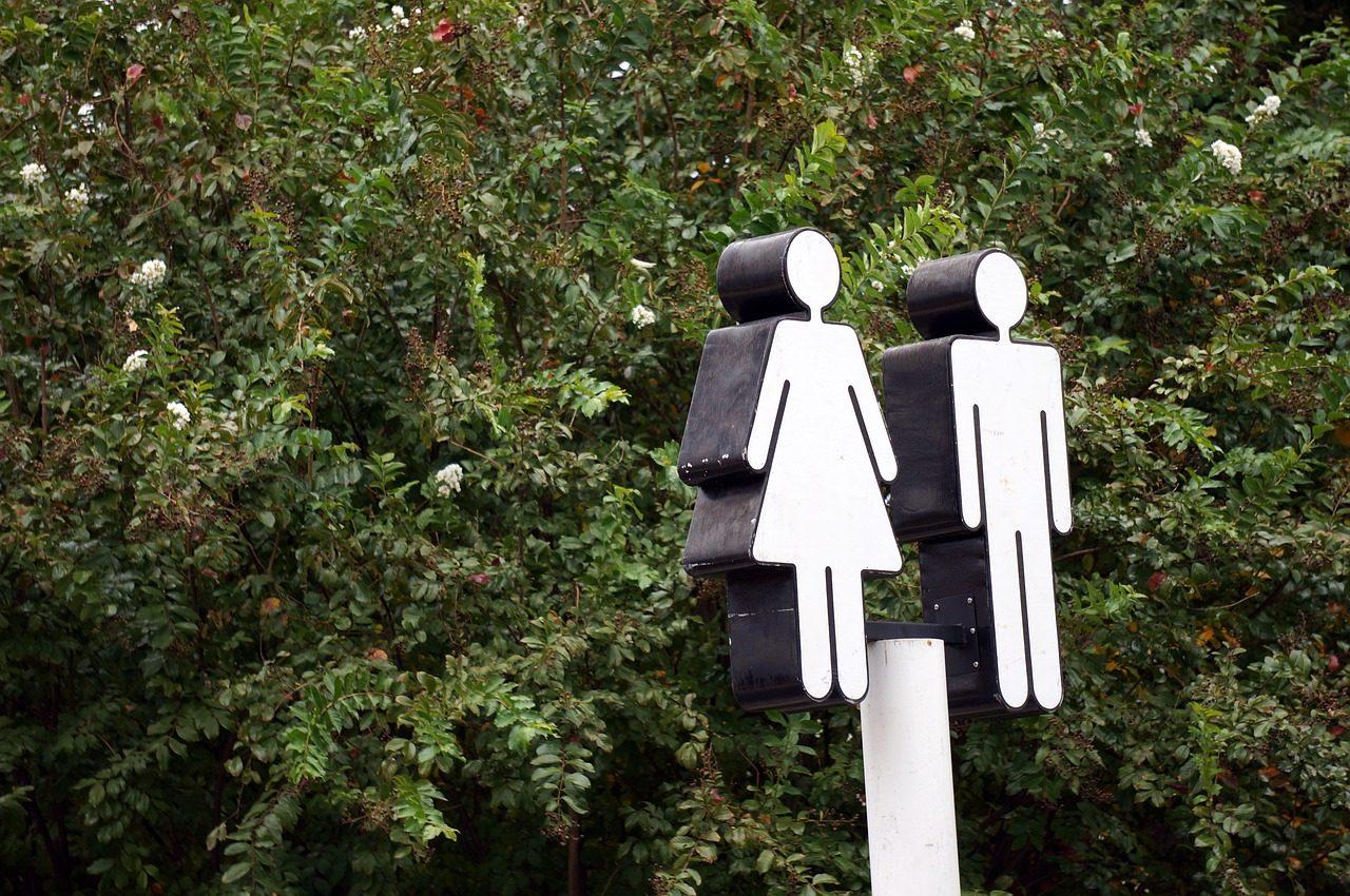 The Gendered Organisation