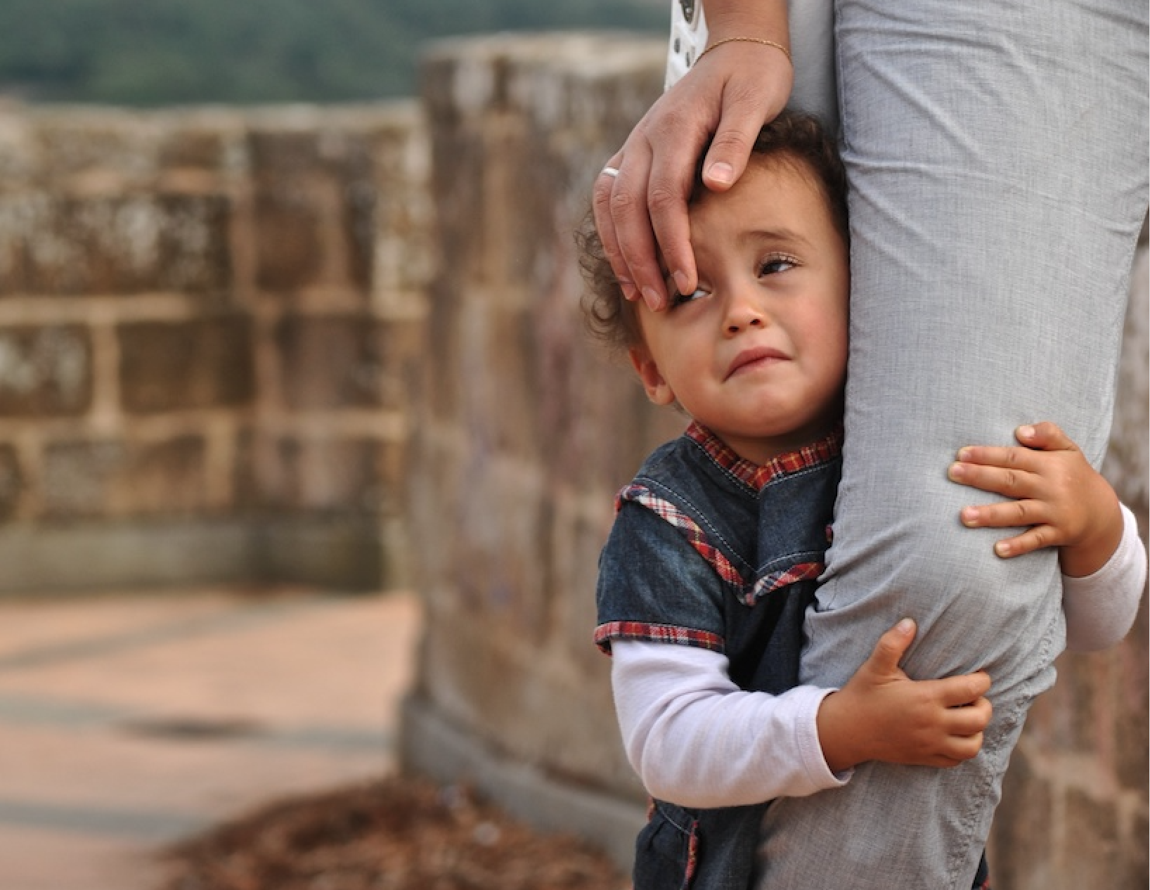 The Biological Scars of Separation