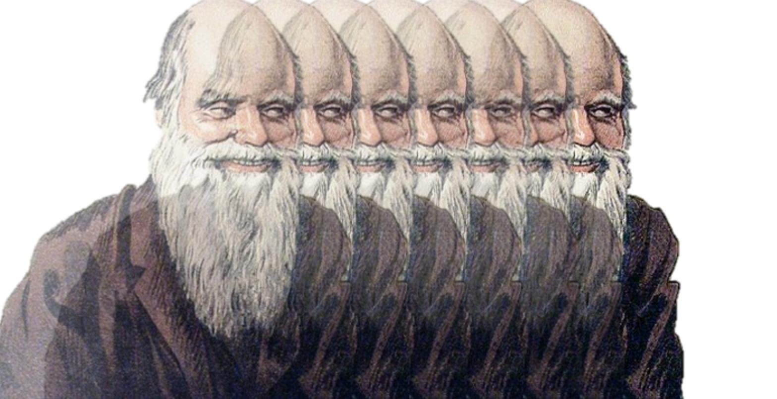 The Darwinian Causes of Mental Illness
