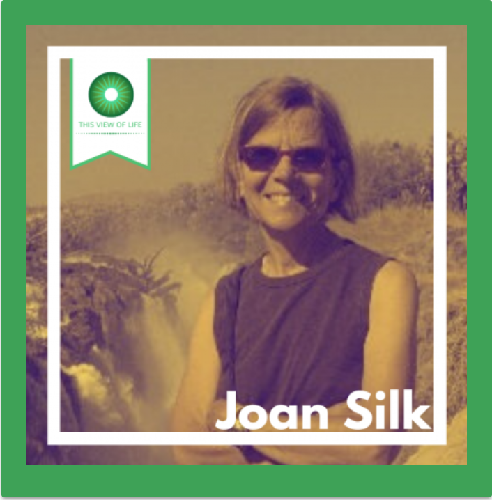 Evolution Doesn't Make Everything Nice: A Conversation About Primate Societies with Joan Silk