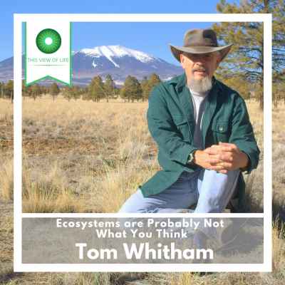Ecosystems are Probably Not What You Think: A Conversation with Tom Whitham